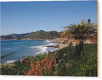 Pismo Beach California Wood Print by Susanne Van Hulst