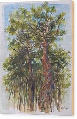 Pitch Pines, Cape Cod Wood Print by Peter Salwen