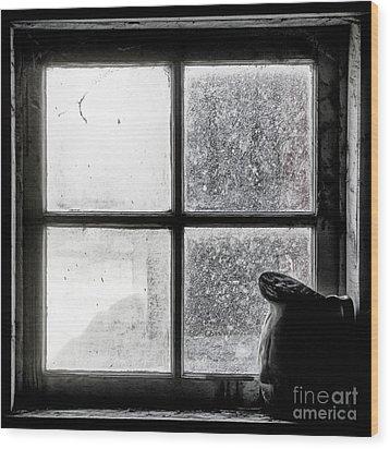 Wood Print featuring the photograph Pitcher In The Window by Brad Allen Fine Art