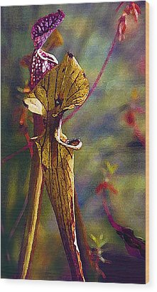 Pitcher Plant Wood Print by Janis Nussbaum Senungetuk