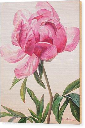 Pivoine 1 Wood Print by Muriel Dolemieux