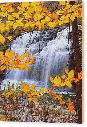 Pixley Falls Wood Print