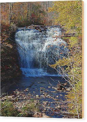 Pixley Falls State Park Wood Print by Diane E Berry