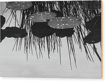 Plant Abstract Wood Print by Carolyn Dalessandro