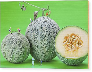 Wood Print featuring the photograph Planting Cantaloupe Melons Little People On Food by Paul Ge