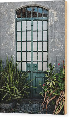 Wood Print featuring the photograph Plants In The Doorway by Marco Oliveira