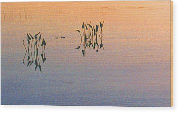 Wood Print featuring the photograph Plants In The Stillness 22 by Lyle Crump