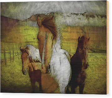 Wood Print featuring the photograph Plateau Ponies by Bellesouth Studio