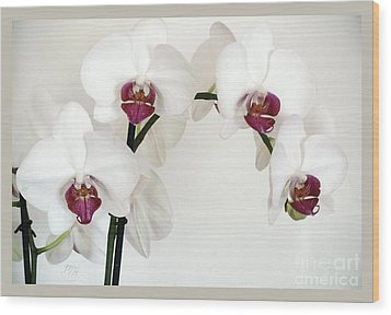Platnum Beauty Orchids Wood Print by Marsha Heiken
