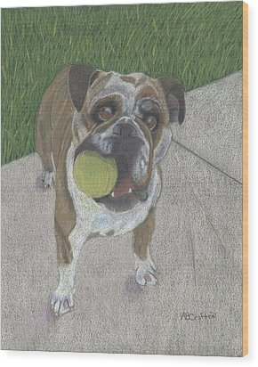 Play With Me Wood Print by Arlene Crafton