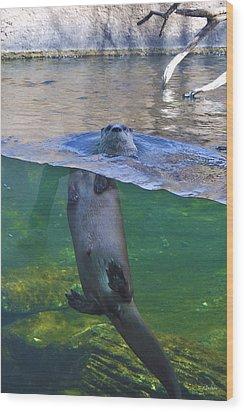 Playful Otter Wood Print by Kat Besthorn