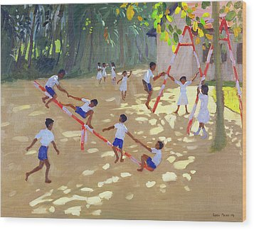 Playground Sri Lanka Wood Print by Andrew Macara