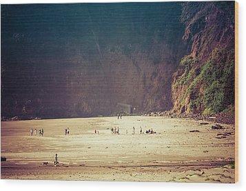 Playing Along Oceanside Oregon Wood Print by Amyn Nasser