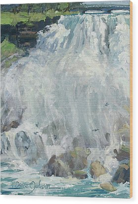 Playing In The Mist - Niagara Falls Wood Print by L Diane Johnson