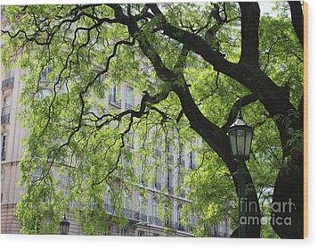 Wood Print featuring the photograph Plaza San Martin by Wilko Van de Kamp
