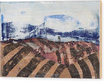 Plowed Spring Wood Print by Jame Hayes