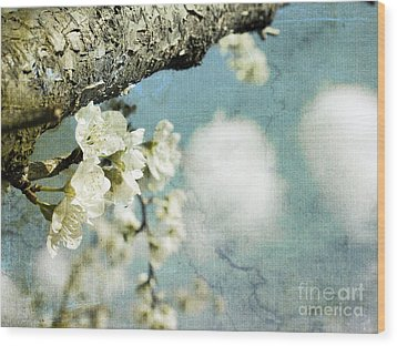Plum Blossoms And Puffy Clouds Wood Print