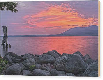 Plum Point Awakening Wood Print