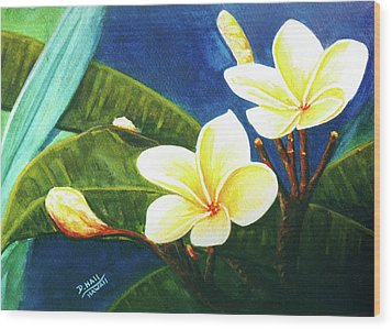Plumeria Flower # 140 Wood Print by Donald k Hall