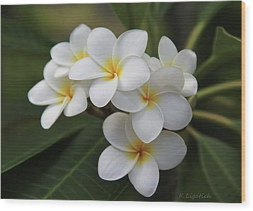Plumeria - Golden Hearts Wood Print by Kerri Ligatich