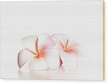 Wood Print featuring the photograph Plumeria by Roger Mullenhour