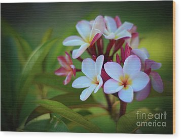 Wood Print featuring the photograph Plumeria Sunset by Kelly Wade
