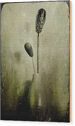 Pods In A Vase Wood Print by Jill Smith