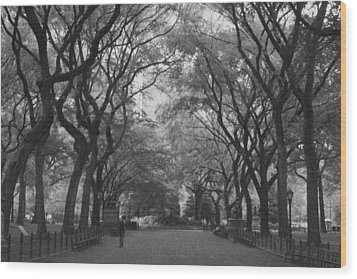 Poets Walk In Central Park Wood Print by Christopher Kirby