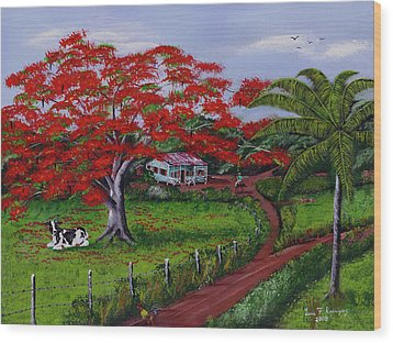 Poinciana Blvd Wood Print by Luis F Rodriguez