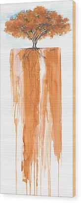 Poinciana Tree Orange Wood Print