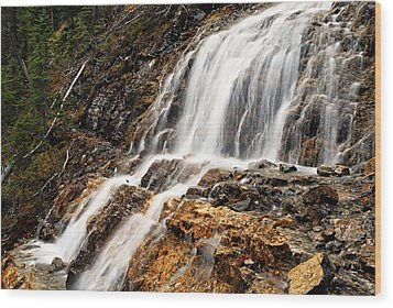 Point Lace Falls 1 Wood Print by Larry Ricker