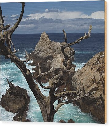 Point Lobos Rocks And Branches Wood Print