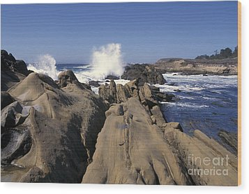 Point Lobos Seascape 3 Wood Print by Stan and Anne Foster