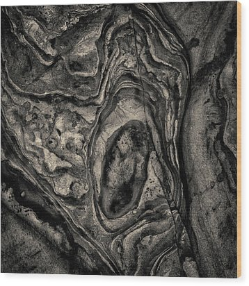 Wood Print featuring the photograph Point Lobos Viii Sq Toned by David Gordon