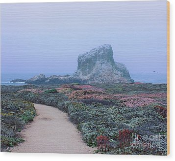 Point Piedras Blancas Wood Print