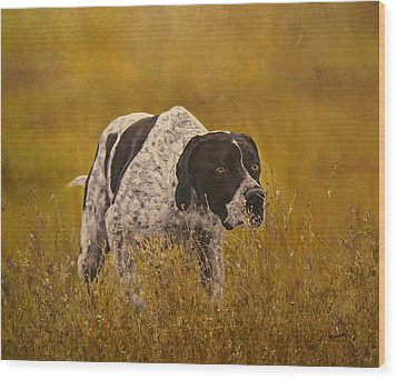 Pointer...to The Point....... Wood Print by Erna Goudbeek