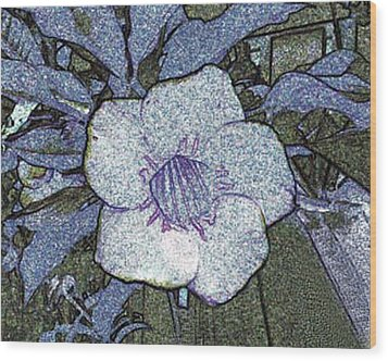 Wood Print featuring the photograph Pointilized Flower by Merton Allen
