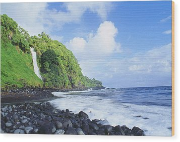 Pokupupu Point Wood Print by Peter French - Printscapes