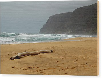 Polihale State Park Wood Print by Kathy Schumann