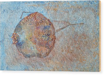 Pomegranate Seed Pod Wood Print by Diana Davenport