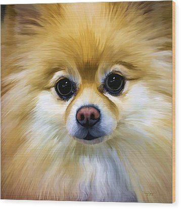 Pomeranian Wood Print by Thanh Thuy Nguyen