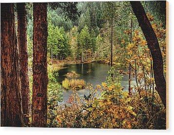 Pond At Golden Or. Wood Print