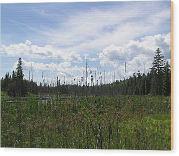 Pond In A Distance Wood Print by Richard Mitchell