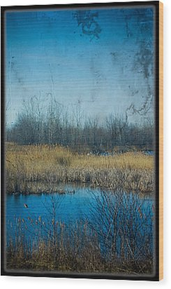 Pond In The Field Wood Print by Michel Filion