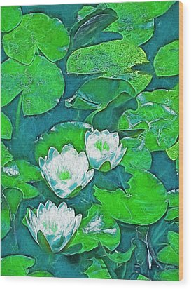 Pond Lily 2 Wood Print by Pamela Cooper