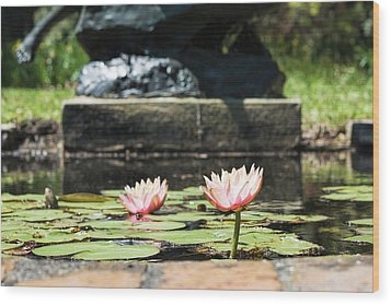 Pond Palette Wood Print