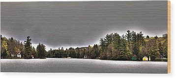 Pond Panorama Wood Print by David Patterson