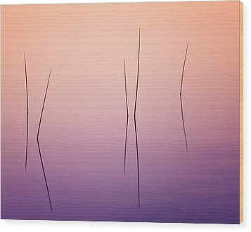 Pond Reeds - Abstract Wood Print by Thomas Schoeller