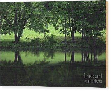 Pond Reflect Wood Print by Karol Livote