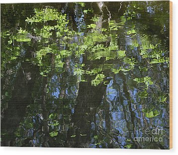 Pond Reflection 1 Wood Print by Janeen Wassink Searles